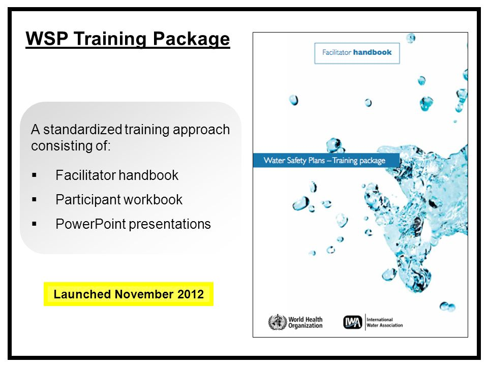 A standardized training approach consisting of:  Facilitator handbook  Participant workbook  PowerPoint presentations WSP Training Package Launched November 2012
