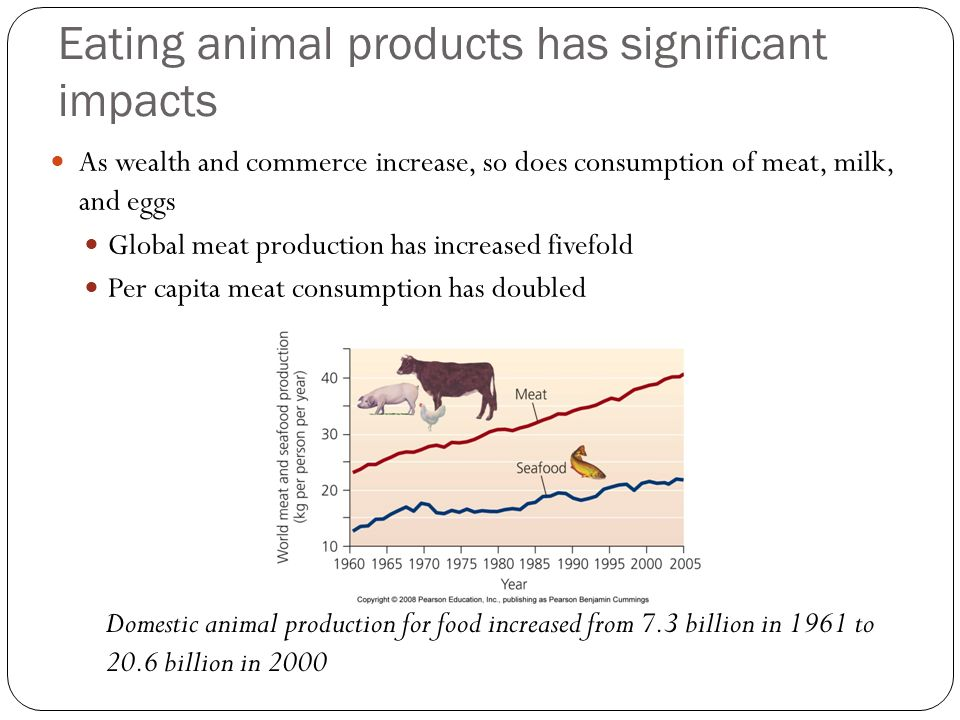 Eating animal products has significant impacts As wealth and commerce increase, so does consumption of meat, milk, and eggs Global meat production has increased fivefold Per capita meat consumption has doubled Domestic animal production for food increased from 7.3 billion in 1961 to 20.6 billion in 2000