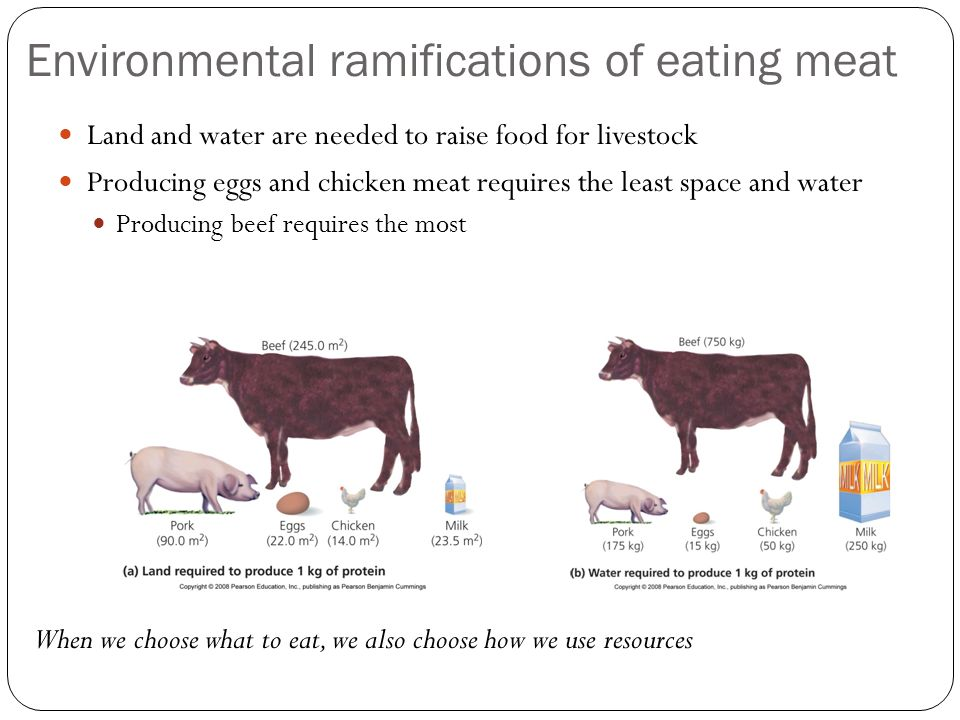 Environmental ramifications of eating meat Land and water are needed to raise food for livestock Producing eggs and chicken meat requires the least space and water Producing beef requires the most When we choose what to eat, we also choose how we use resources
