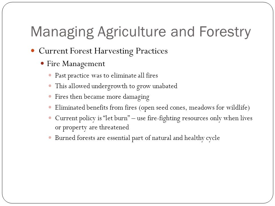 Managing Agriculture and Forestry Current Forest Harvesting Practices Fire Management Past practice was to eliminate all fires This allowed undergrowth to grow unabated Fires then became more damaging Eliminated benefits from fires (open seed cones, meadows for wildlife) Current policy is let burn – use fire-fighting resources only when lives or property are threatened Burned forests are essential part of natural and healthy cycle