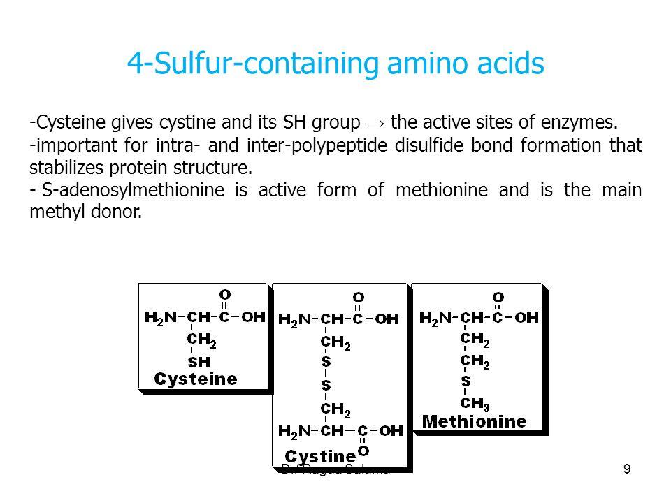 Dr/ Ragaa Salama1 1 Amino acids Objectives Define amino acids ...