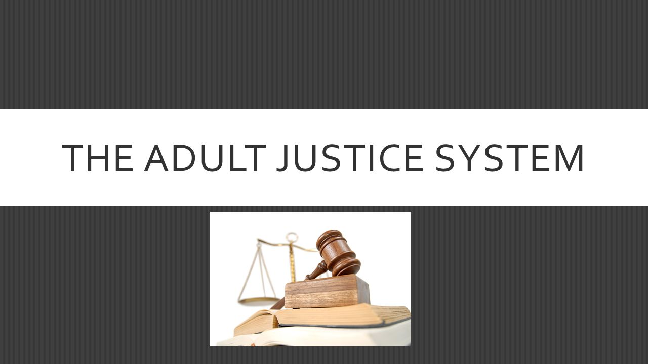 THE ADULT JUSTICE SYSTEM
