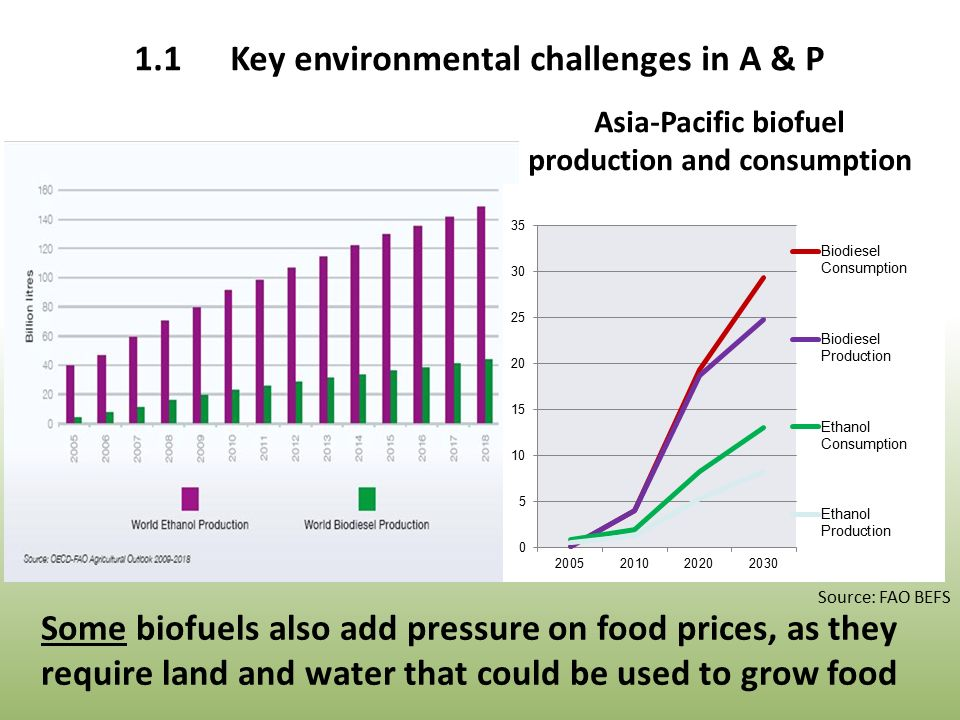 Asia-Pacific biofuel production and consumption Source: FAO BEFS Some biofuels also add pressure on food prices, as they require land and water that could be used to grow food 1.1Key environmental challenges in A & P