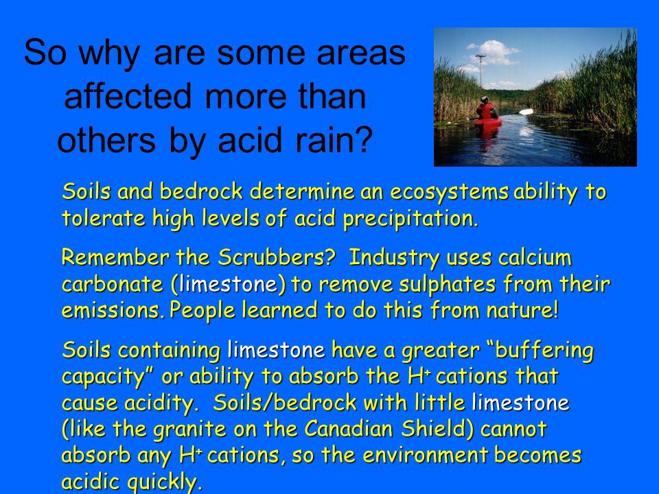 ACID RAIN Acid Rain In Canada Why All The Fuss Policies And - Us soil buffering capacity limestone map