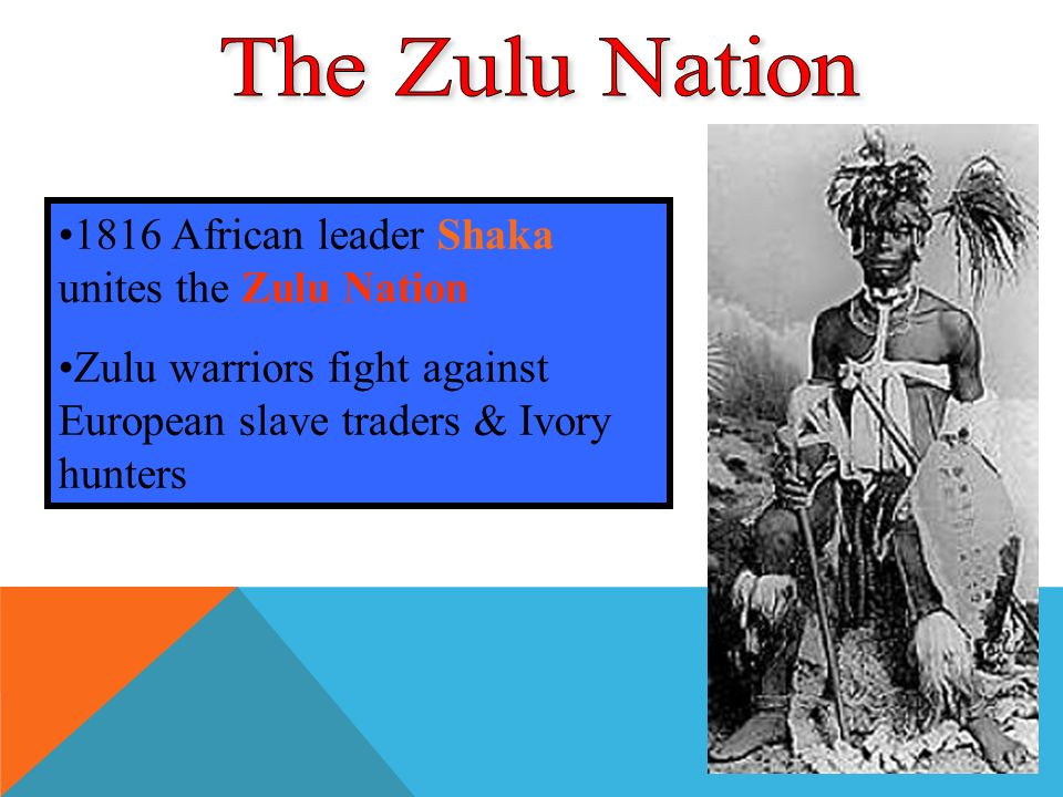 1816 African leader Shaka unites the Zulu Nation Zulu warriors fight against European slave traders & Ivory hunters