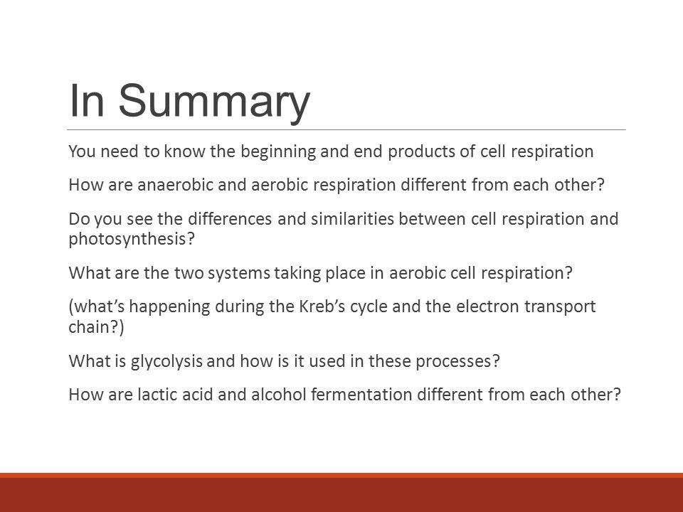similarities between photosynthesis and respiration