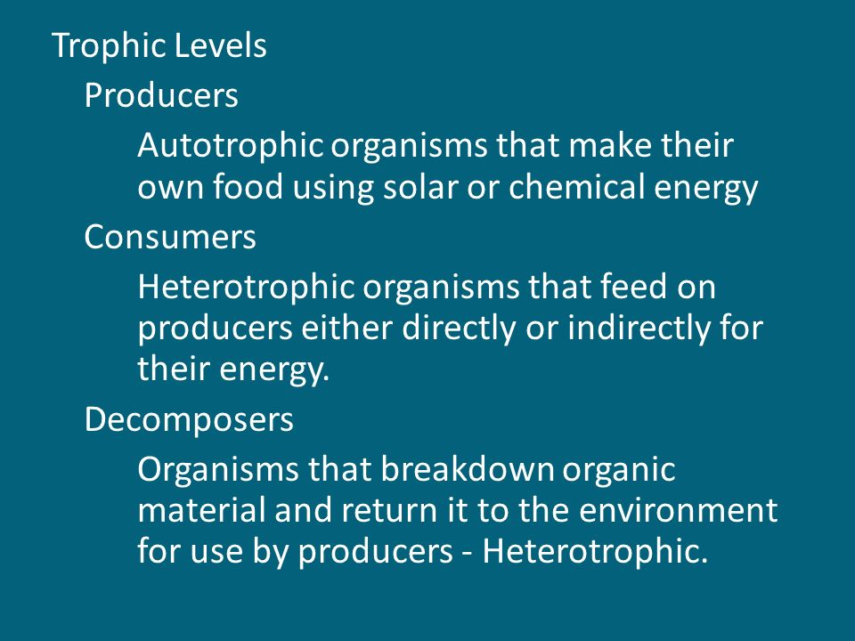 Trophic Levels Producers Autotrophic organisms that make their own food using solar or chemical energy Consumers Heterotrophic organisms that feed on producers either directly or indirectly for their energy.