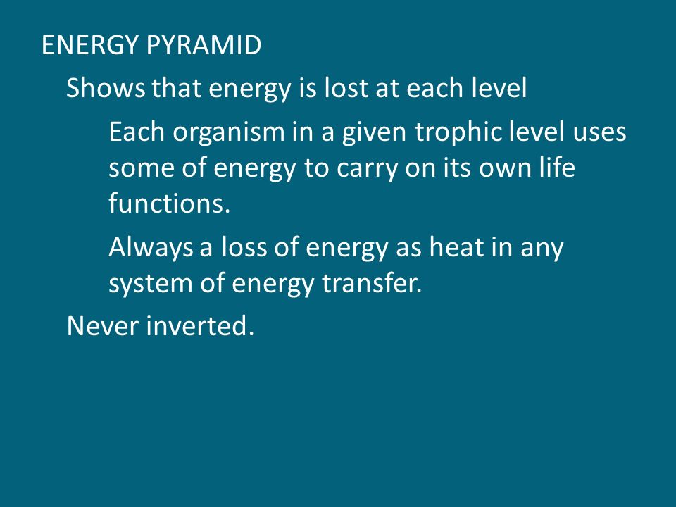 ENERGY PYRAMID Shows that energy is lost at each level Each organism in a given trophic level uses some of energy to carry on its own life functions.