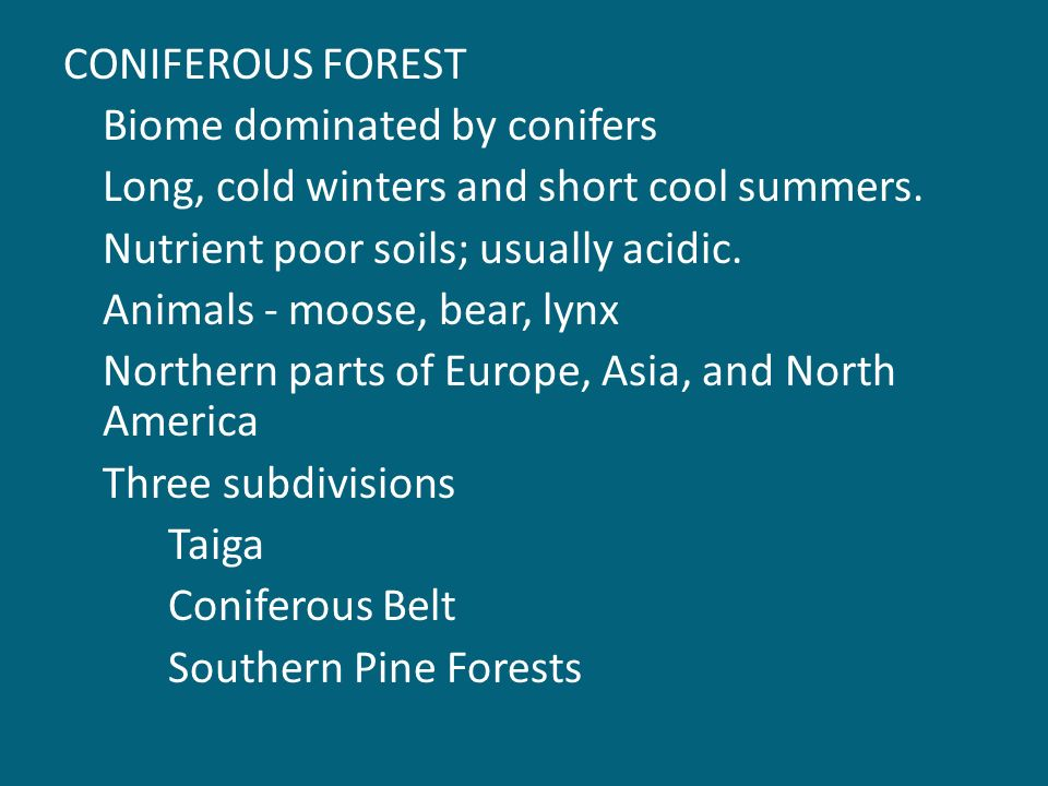 CONIFEROUS FOREST Biome dominated by conifers Long, cold winters and short cool summers.