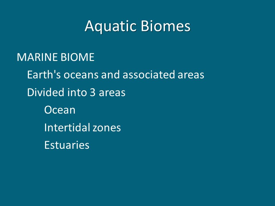 Aquatic Biomes MARINE BIOME Earth s oceans and associated areas Divided into 3 areas Ocean Intertidal zones Estuaries