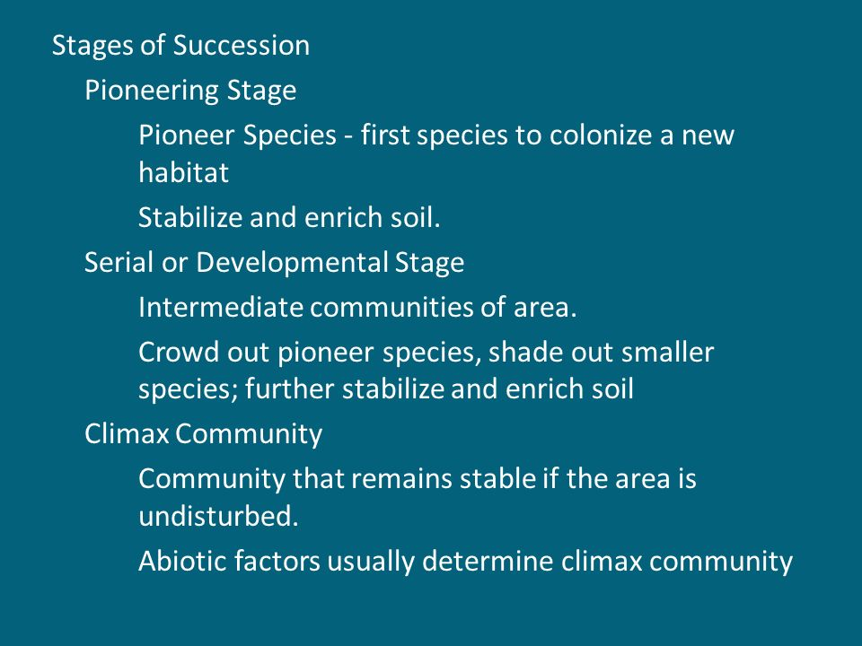 Stages of Succession Pioneering Stage Pioneer Species - first species to colonize a new habitat Stabilize and enrich soil.