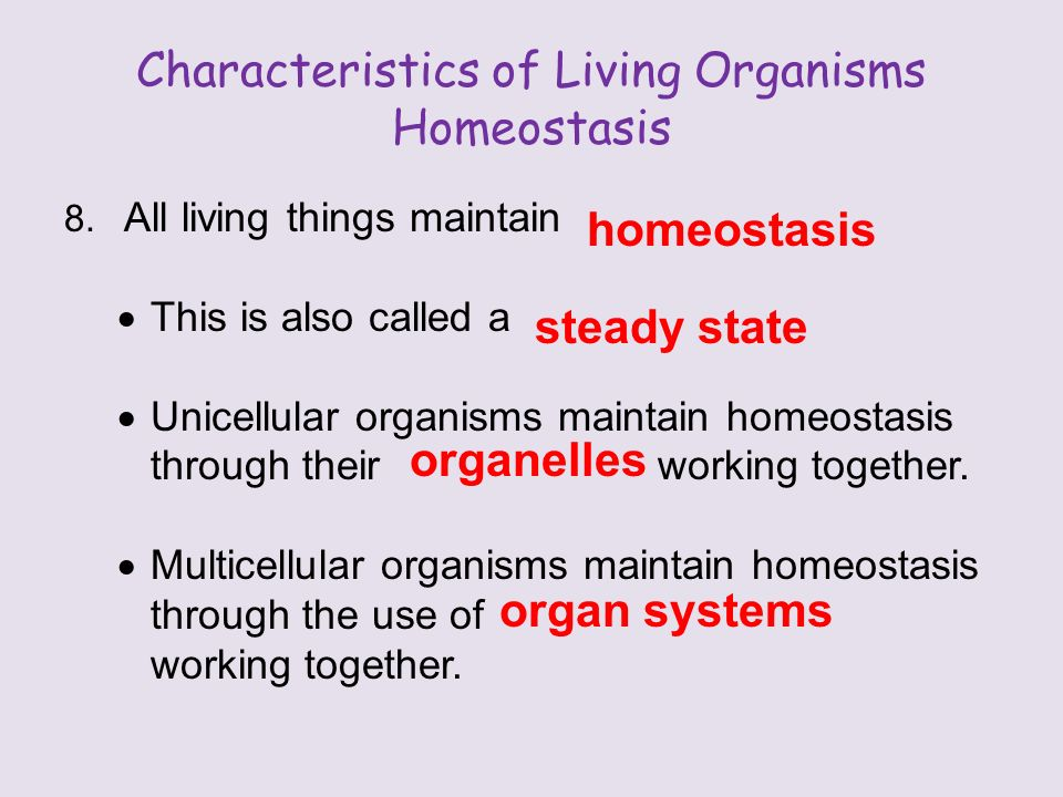 Characteristics of Living Organisms Homeostasis 8.