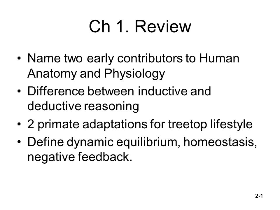 Ch 1. Review Name two early contributors to Human Anatomy and ...