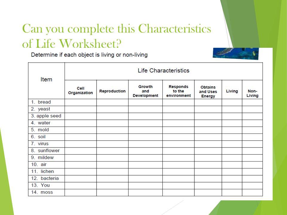 Characteristics of Life Living vs Nonliving Characteristics of – Characteristics of Life Worksheet
