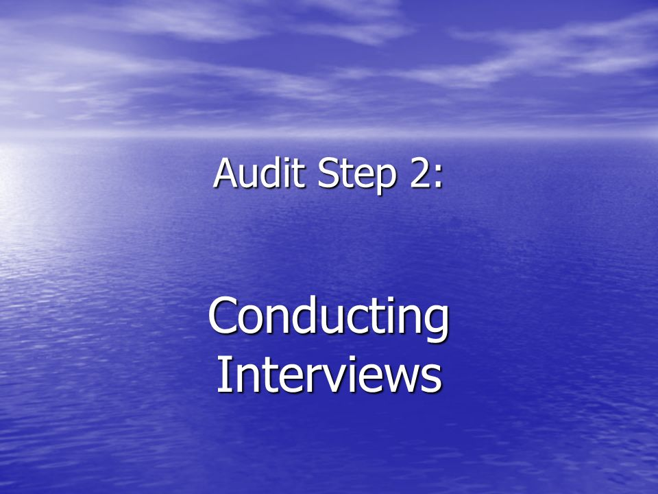Audit Step 2: Conducting Interviews