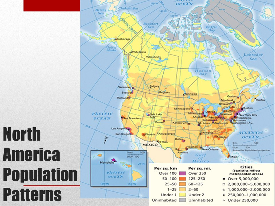 North America Population Patterns Immigration Information According
