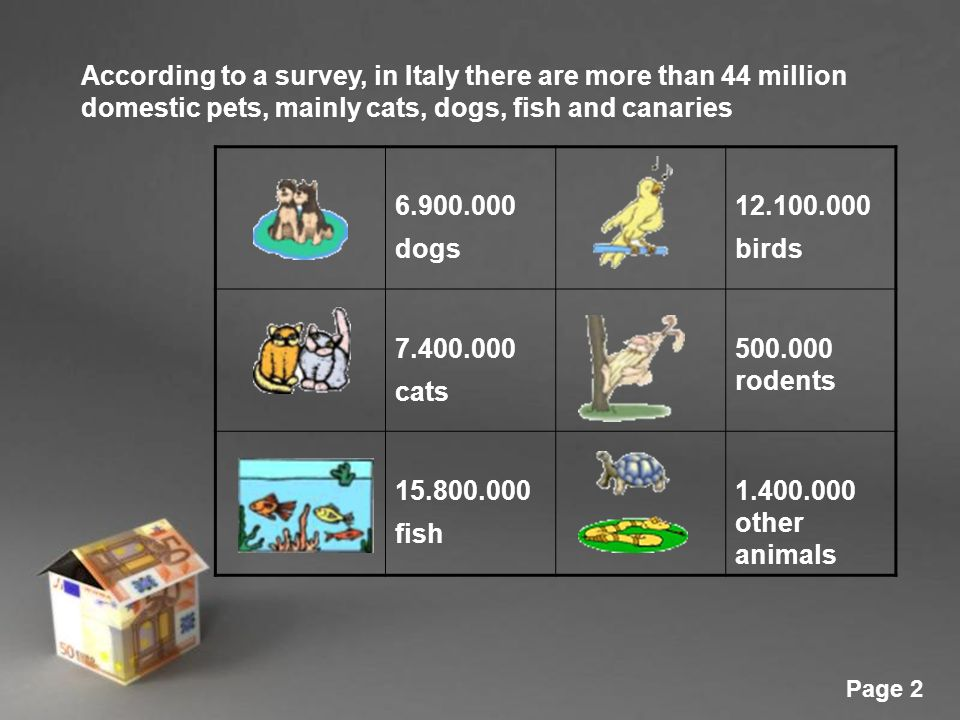 Powerpoint templates page 1 powerpoint templates italy animal 2 powerpoint templates page 2 according to a survey in italy there are more than 44 million domestic pets mainly cats dogs fish and canaries 6900000 toneelgroepblik Choice Image