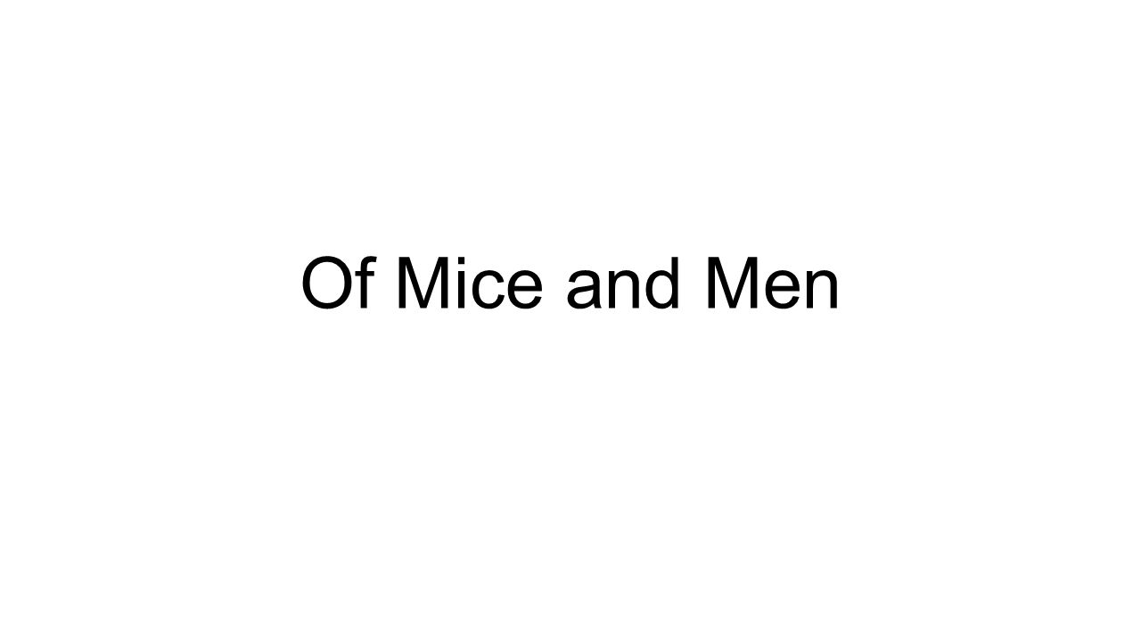 curley of mice and men essay