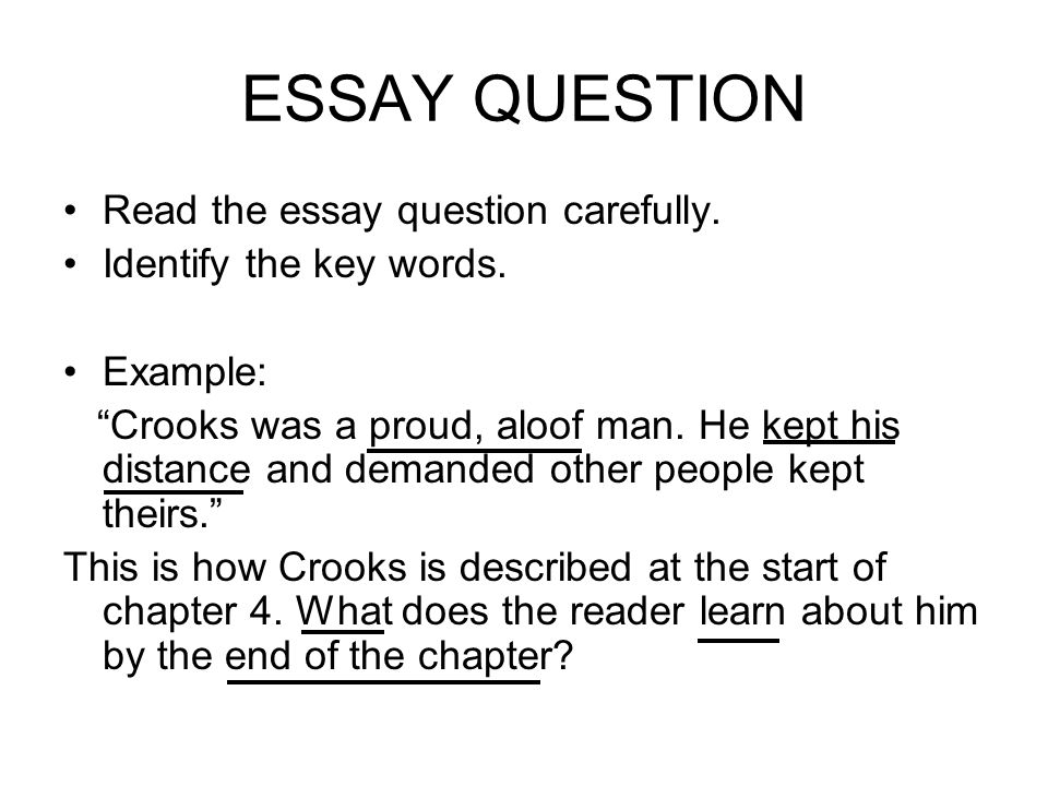 essay questions for of mice and men Of mice and men essay topics: good collection of academic writing tips and free essay samples you can read it online here.