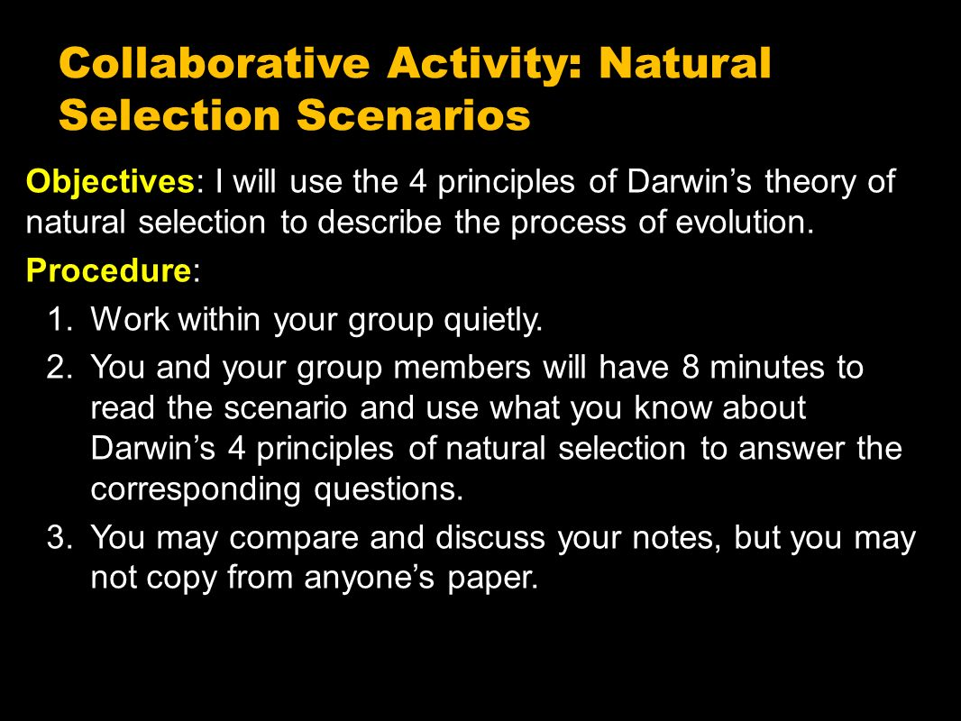 an analysis of charles darwins process of natural selection