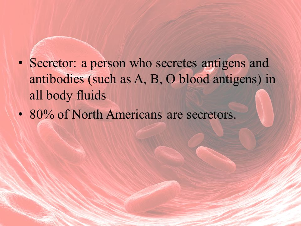 Secretor: a person who secretes antigens and antibodies (such as A, B, O blood antigens) in all body fluids 80% of North Americans are secretors.