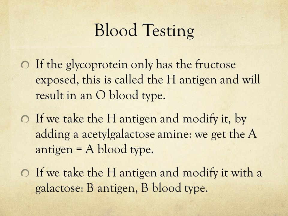 Blood Testing If the glycoprotein only has the fructose exposed, this is called the H antigen and will result in an O blood type.