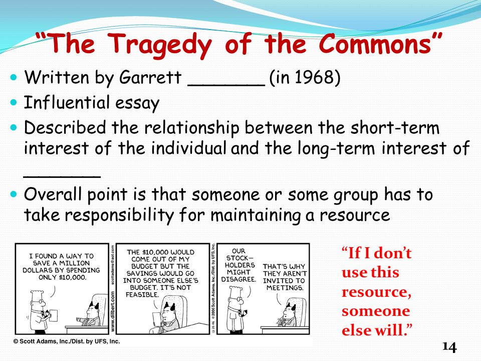 tragedy of the commons essay the tragedy of the commons photo essay essay essay on tragedy preview jpg hamlet tragedy essay