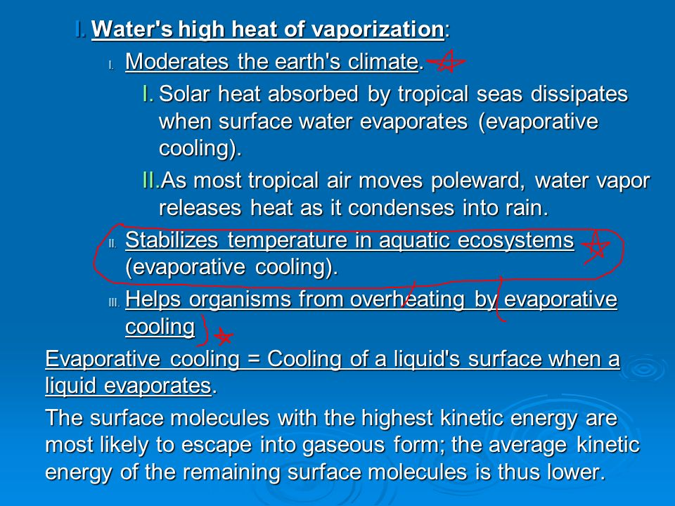 PROPERTIES OF WATER. I. Structure of the Water Molecule Polarity ...