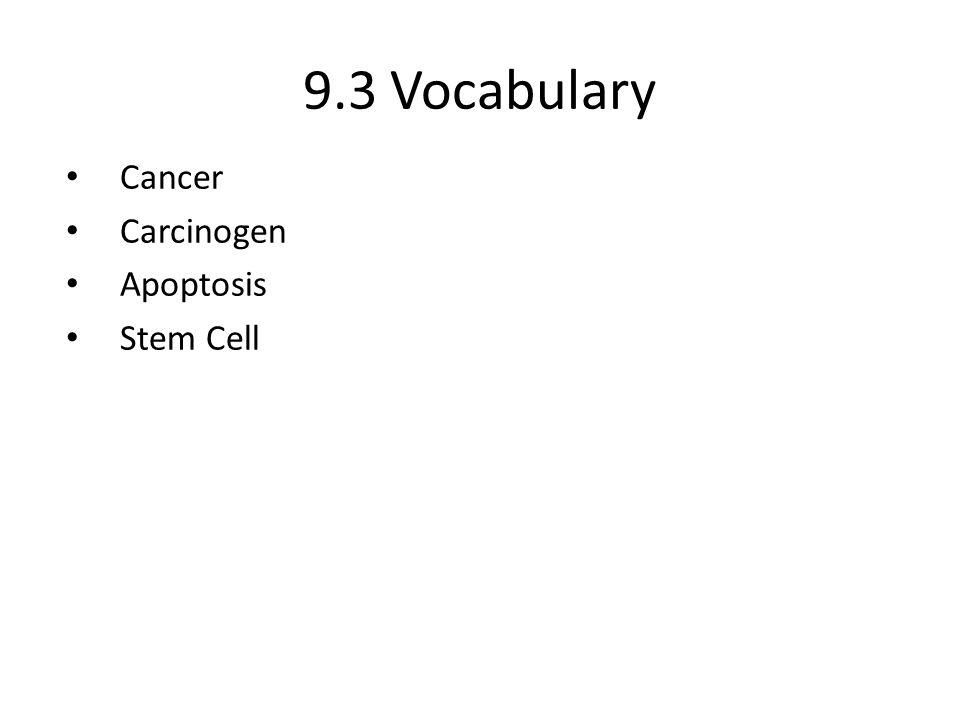 Cytokinesis 6