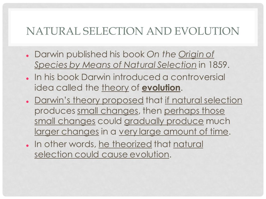 the theory of evolution essay Free essay: the weak theory of evolution one of the most contested issues in the creation/evolution debate is the origin of the eye creationists see the eye.