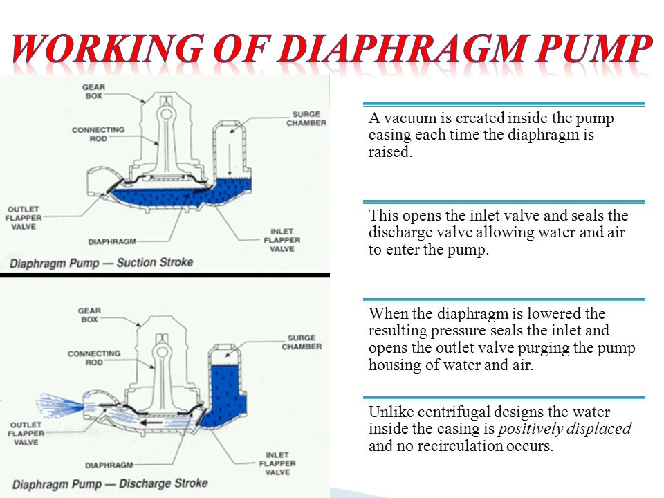 A vacuum is created inside the pump casing each time the diaphragm is raised.