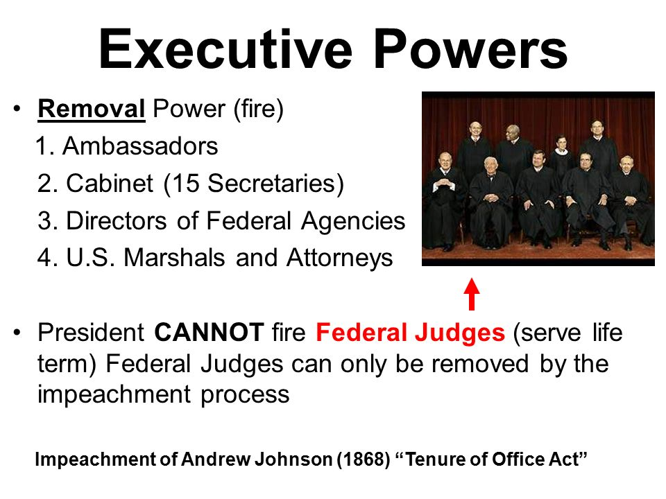 Presidential Powers Presidential Power Divided and Unified ...