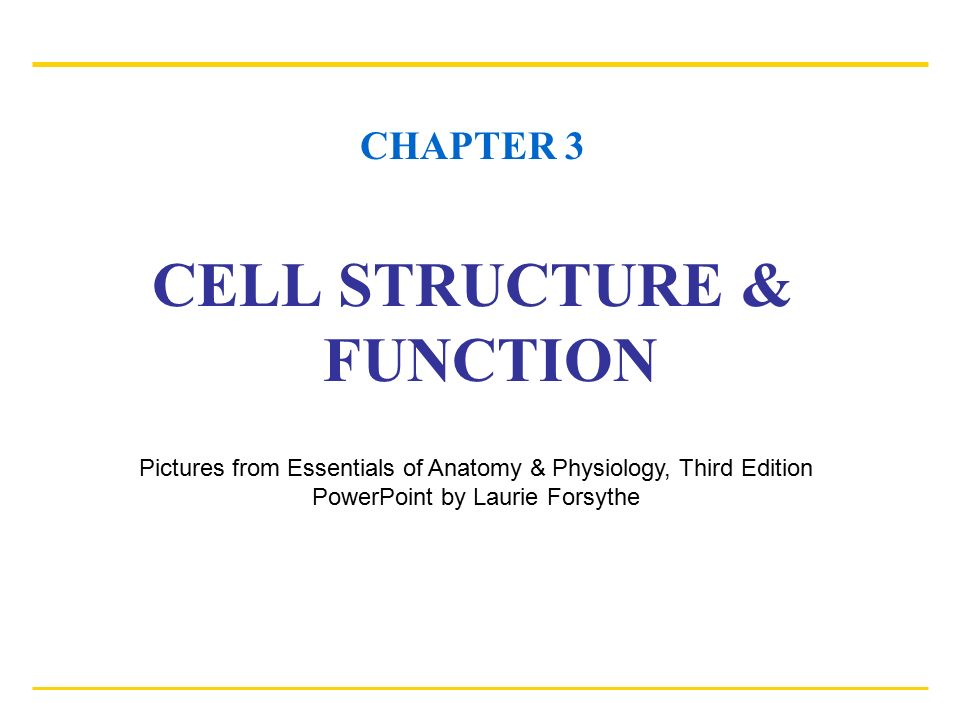 CHAPTER 3 CELL STRUCTURE & FUNCTION Pictures from Essentials of ...