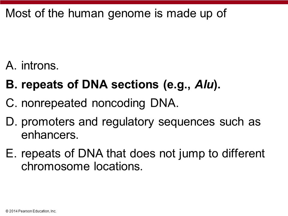 © 2014 Pearson Education, Inc. Most of the human genome is made up of A.introns.