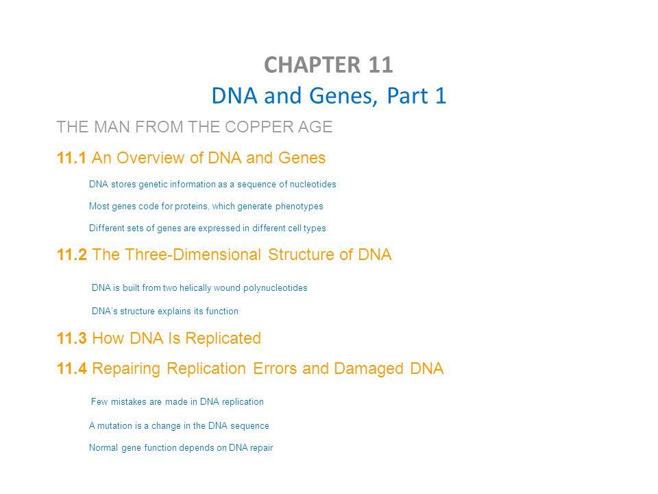 Printables Chapter 11 Dna And Genes Worksheet Answers chapter 11 dna and genes worksheet answers bloggakuten 3 worksheet