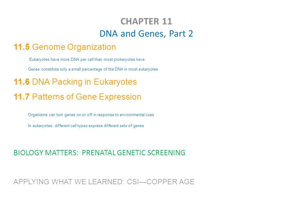 Printables Chapter 11 Dna And Genes Worksheet Answers chapter 11 dna and genes worksheet answers bloggakuten davezan