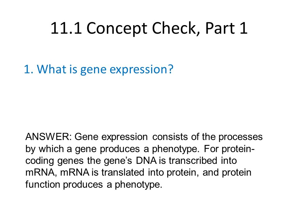 Human pedigree genetics worksheet answers