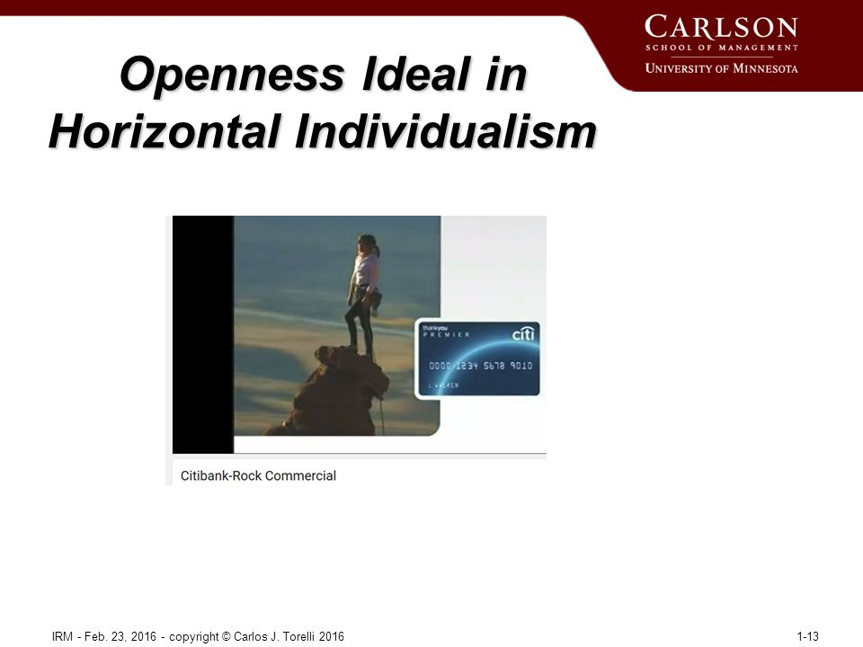 Openness Ideal in Horizontal Individualism IRM - Feb.