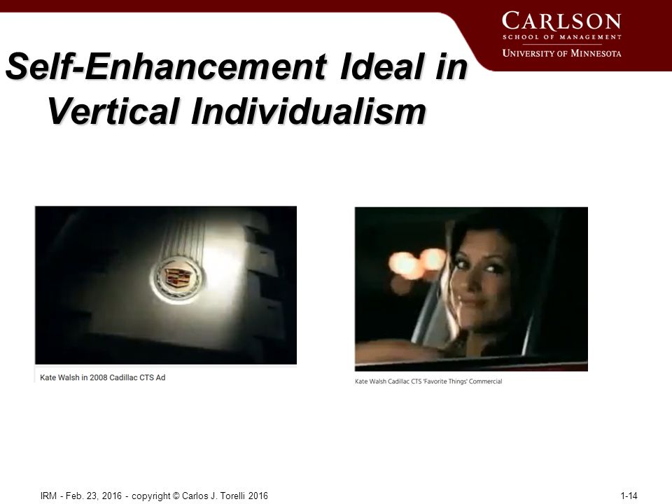 Self-Enhancement Ideal in Vertical Individualism IRM - Feb.