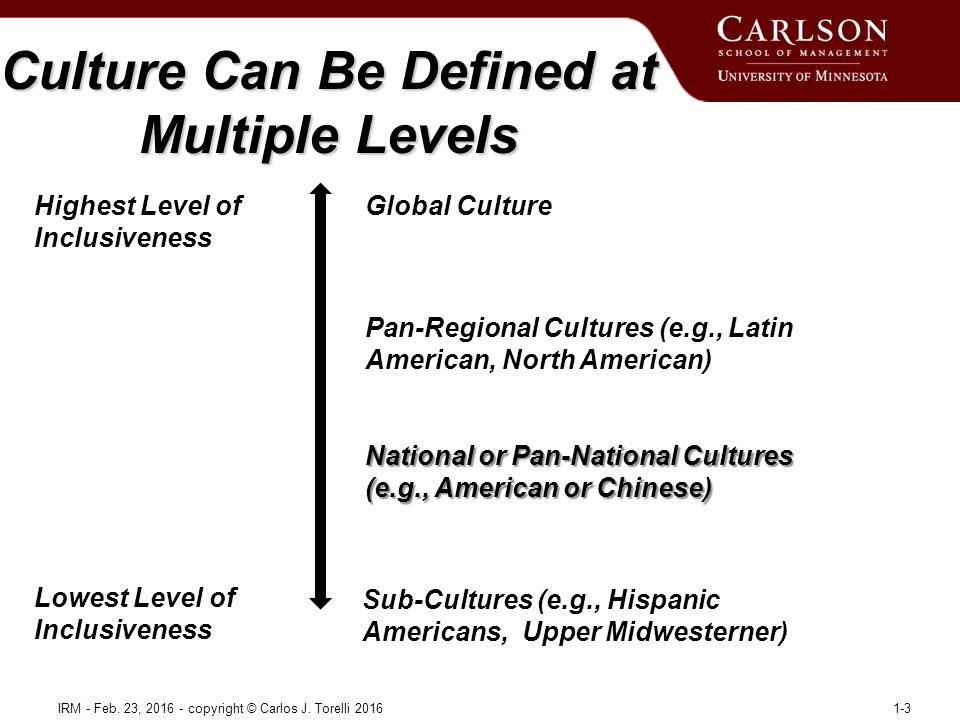 Culture Can Be Defined at Multiple Levels IRM - Feb.
