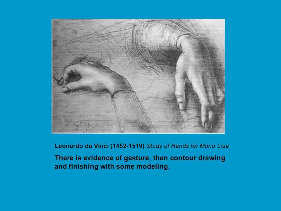 Contour Line Drawing Leonardo Da Vinci : Contour drawing drawings usually begin with