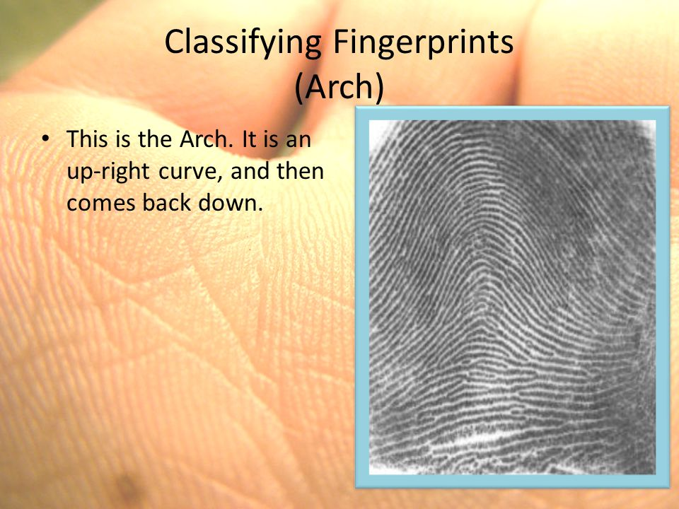 Thesis for fingerprinting, need help please!!?