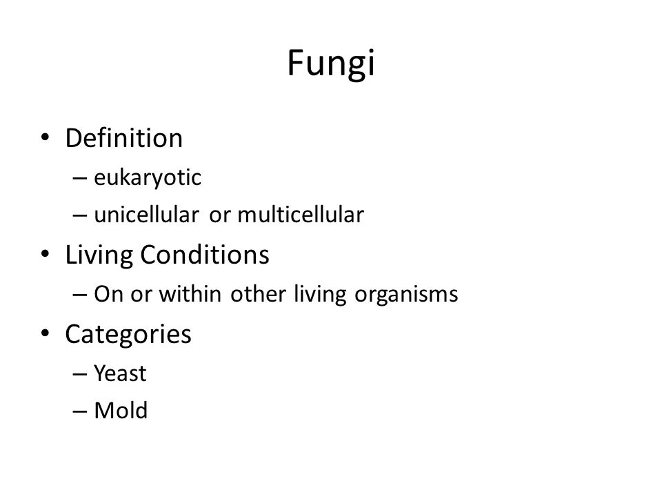 8 Fungi Definition U2013 Eukaryotic U2013 Unicellular Or Multicellular Living  Conditions U2013 On Or Within Other Living Organisms Categories U2013 Yeast U2013 Mold