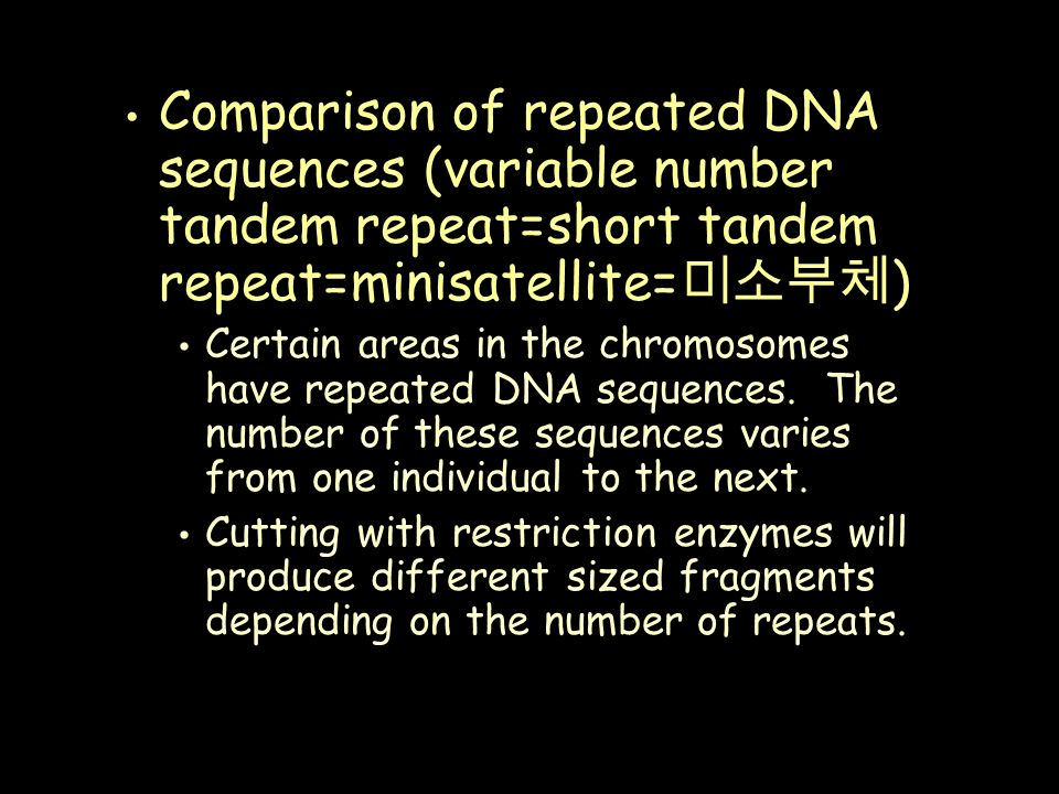 Comparison of repeated DNA sequences (variable number tandem repeat=short tandem repeat=minisatellite= 미소부체 ) Certain areas in the chromosomes have repeated DNA sequences.