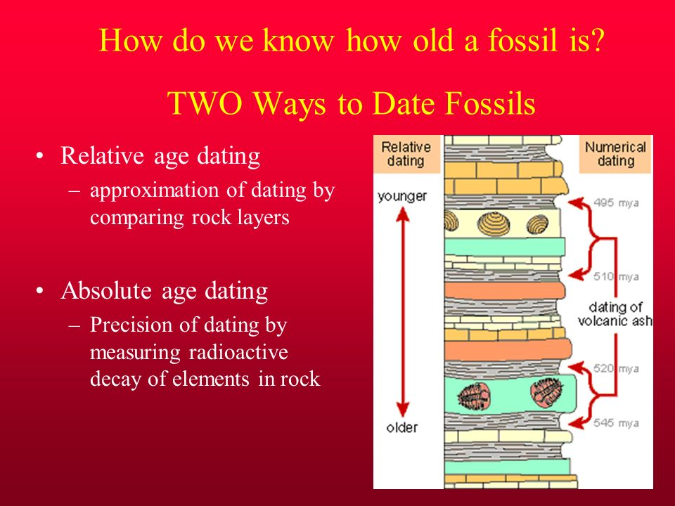 two main ways of dating fossils
