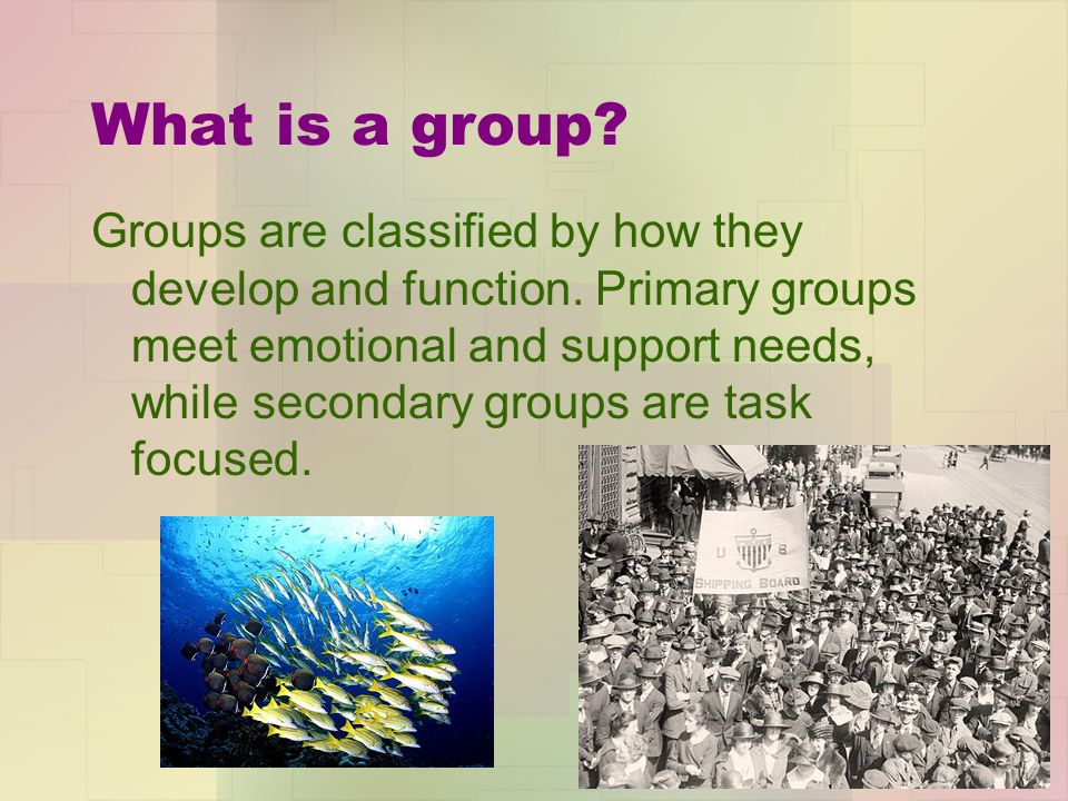 What is a group. Groups are classified by how they develop and function.