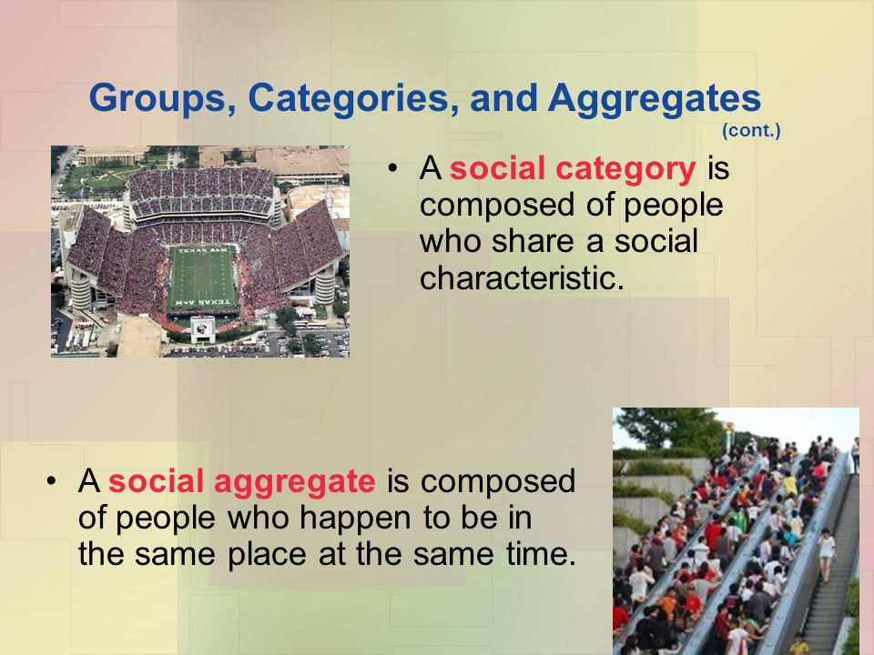 Groups, Categories, and Aggregates (cont.) A social category is composed of people who share a social characteristic.