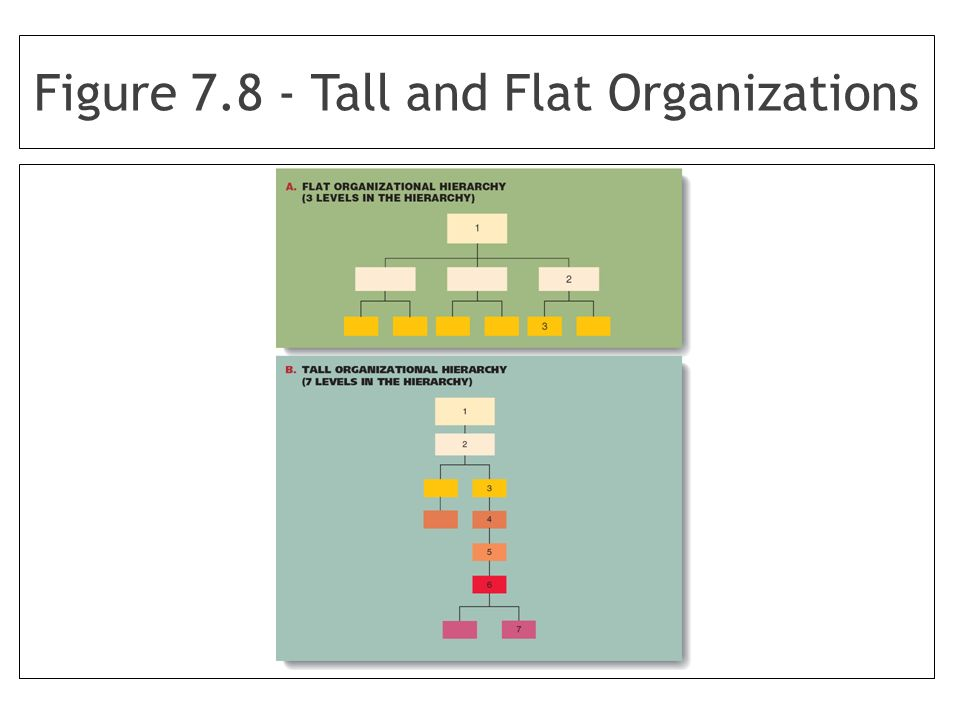 Figure 7.8 - Tall and Flat Organizations