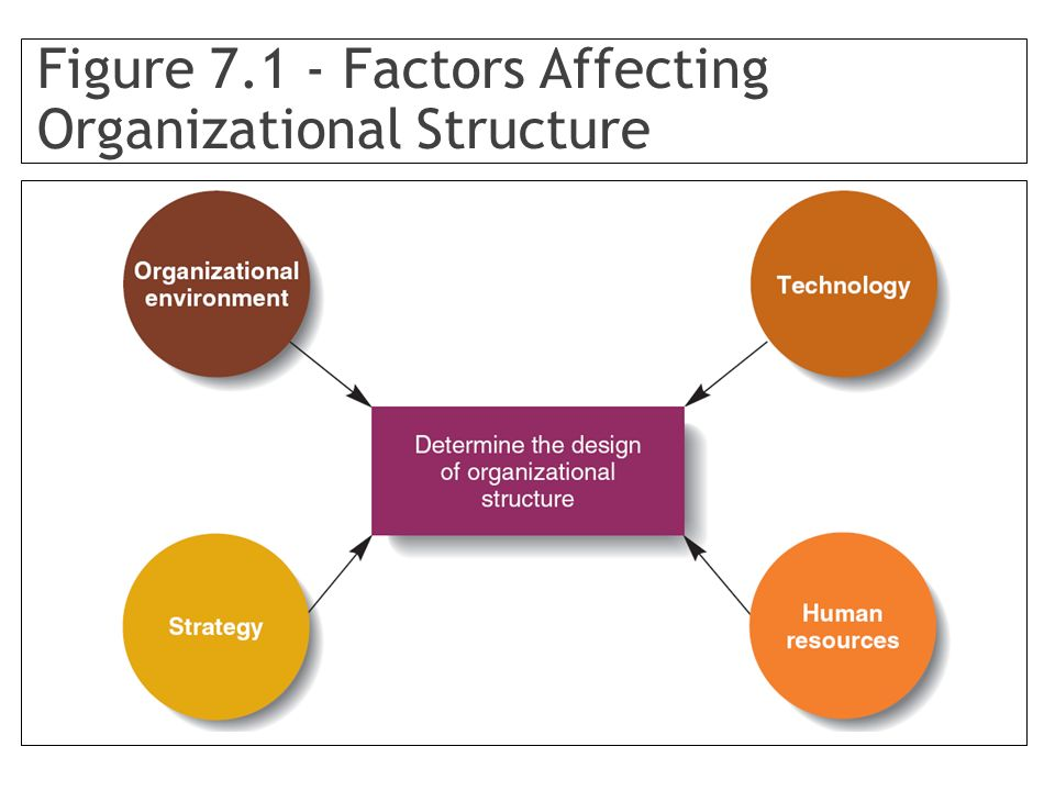 Figure 7.1 - Factors Affecting Organizational Structure