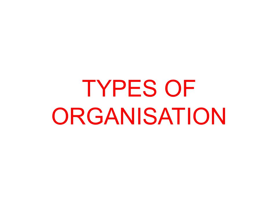 TYPES OF ORGANISATION